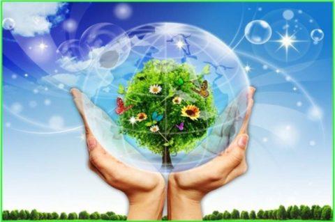 Làm đẹp và bảo vệ môi trường