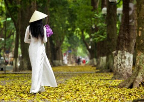Tháng 8 – Có phải em mùa thu Hà Nội