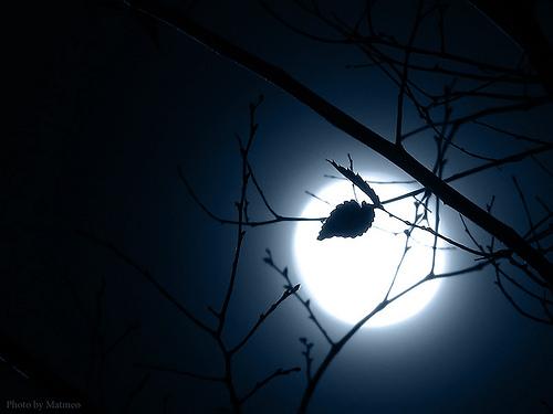 Kết quả hình ảnh cho đêm